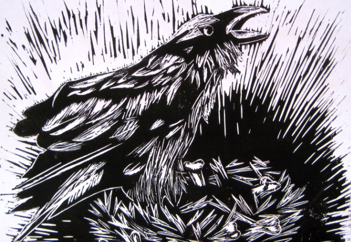 Crow in linocut and ink